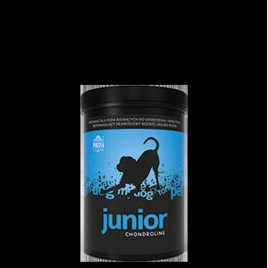 Chondroline Junior 350g
